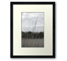 Peace Grass Framed Print