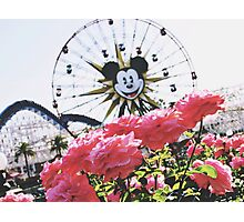 DCA In The Spring  Photographic Print