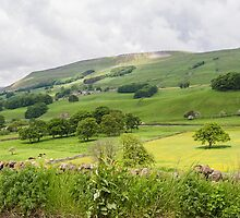 Wensleydale UK by Pauline Tims