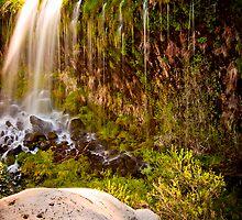 Massbrae Falls by Louis Powell