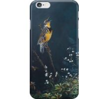Meadowlark Music iPhone Case/Skin