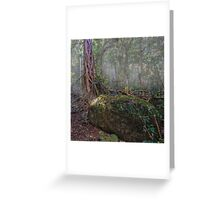 the gondwana rainforest Greeting Card