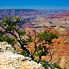 Grand Canyon Over The Edge by photosbyflood