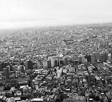 Tokyo Cosmopolis by fenjay
