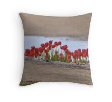 Cool Reflection Throw Pillow