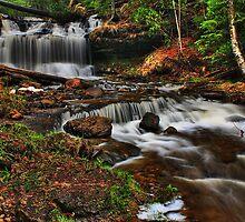 Falls Left by Chintsala