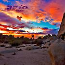 Joshua Tree National Park Sunset 1 by photosbyflood