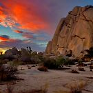 Joshua Tree Sunset 3 by photosbyflood