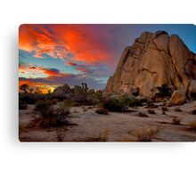Joshua Tree Sunset 3 Canvas Print