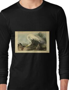 James Audubon Vector Rebuild - The Birds of America - From Drawings Made in the United States and Their Territories V 1-7 1840 - Great American White Egret Long Sleeve T-Shirt