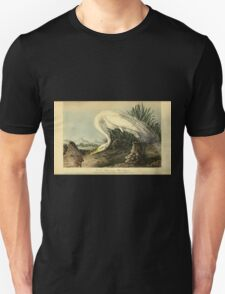 James Audubon Vector Rebuild - The Birds of America - From Drawings Made in the United States and Their Territories V 1-7 1840 - Great American White Egret T-Shirt