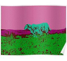 { irish sheep in pink halftone } Poster