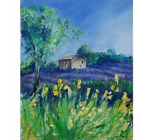 Lavender Field With Yellow Flowers painting Photographic Print