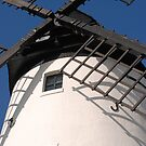 Windmill by shakey