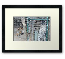 Socrates Getting Charged - The Resolution Framed Print
