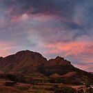 Stellenbosch Autumn by Hougaard Malan