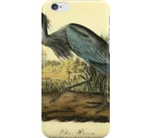 James Audubon Vector Rebuild - The Birds of America - From Drawings Made in the United States and Their Territories V 1-7 1840 - Blue Heron iPhone Case/Skin