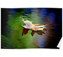 Floating Fall Leaf... Poster