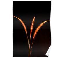 Grass Blades Poster