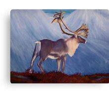 The Caribou Canvas Print