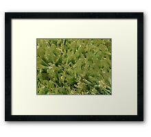 The Hidden Land - Keep Off The Grass Framed Print