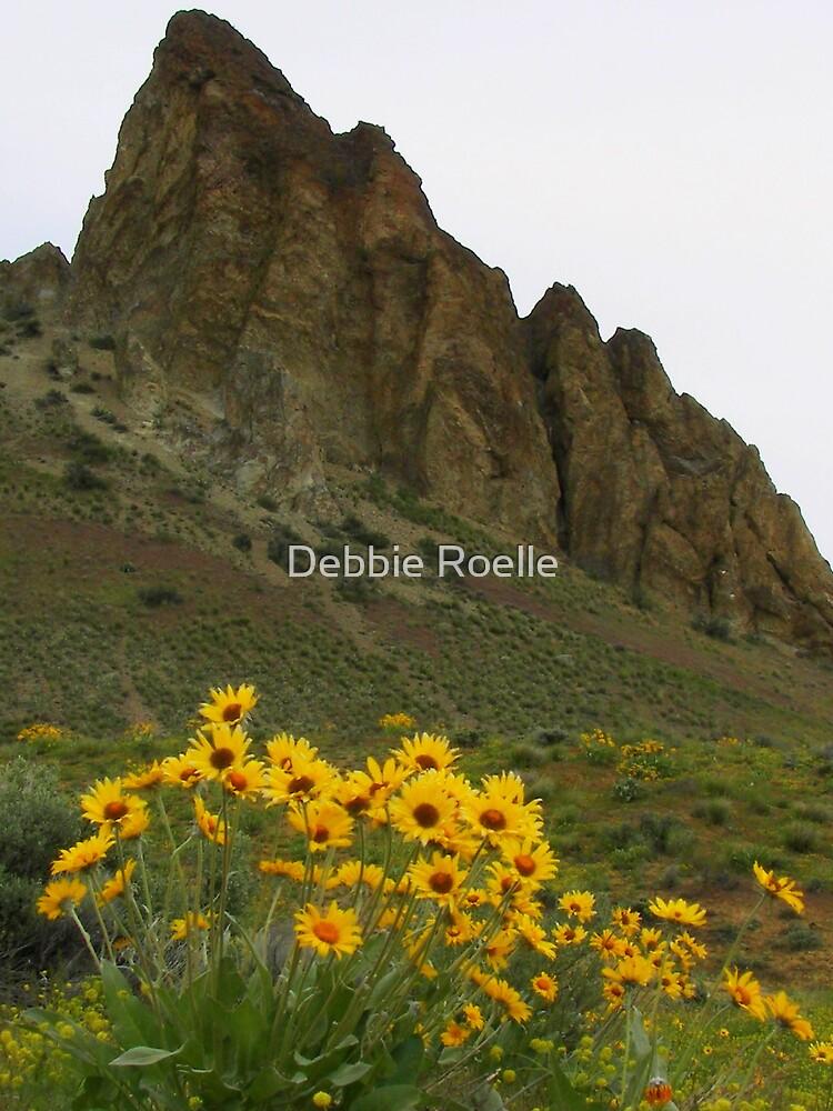 Saddle Rock Ridge by Debbie Roelle