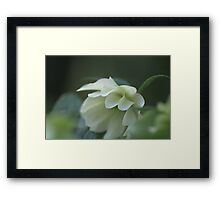 Soft Ripples Framed Print