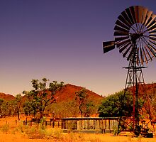 Out back in the outback by Shane Bolton