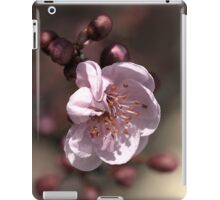 Soft as Blossom iPad Case/Skin