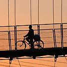 Cycling Home by Harry Oldmeadow