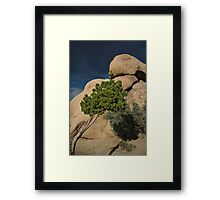 Shadows and Lines Framed Print