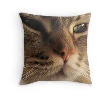 Close Up Cat 3 Throw Pillow