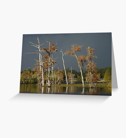 Lull Before the Storm Greeting Card