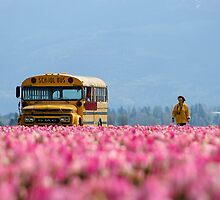 School Bus, Magic Bus. by Todd Rollins