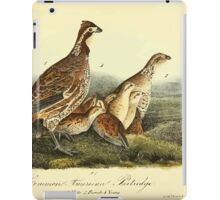 James Audubon Vector Rebuild - The Birds of America - From Drawings Made in the United States and Their Territories V 1-7 1840 - Common American Partridge iPad Case/Skin