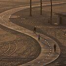 the bike lane by Jorge Vismara