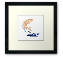 Atlantic Salmon Fish Jumping Water Isolated Framed Print