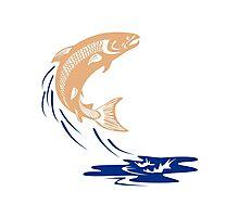 Atlantic Salmon Fish Jumping Water Isolated Photographic Print