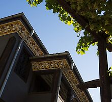 Decorated Eaves and Grapes Trellis - Old Town Plovdiv, Bulgaria by Georgia Mizuleva