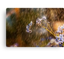 Fairy Tale Gone Bad 2  Canvas Print