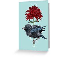 Baby Crow Greeting Card