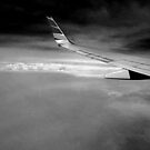 Air Plane Wing by mrfriendly