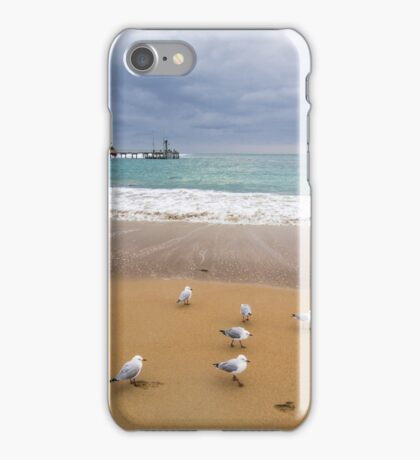 Meeting of the Gulls iPhone Case/Skin