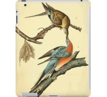 James Audubon Vector Rebuild - The Birds of America - From Drawings Made in the United States and Their Territories V 1-7 1840 - Passenger Pigeon iPad Case/Skin