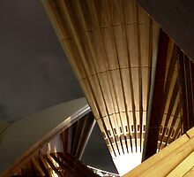 Sydney Opera House by Christopher Biggs