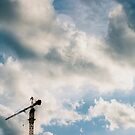 Crane by anuarism