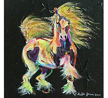Gypsy Gold Pony Photographic Print