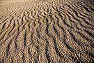 Canunda National Park by SD Smart