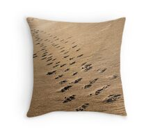 Crossing Paths II Throw Pillow