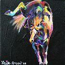 Rainbow Pony by louisegreen